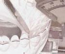 アソアライナーの製作工程イメージ